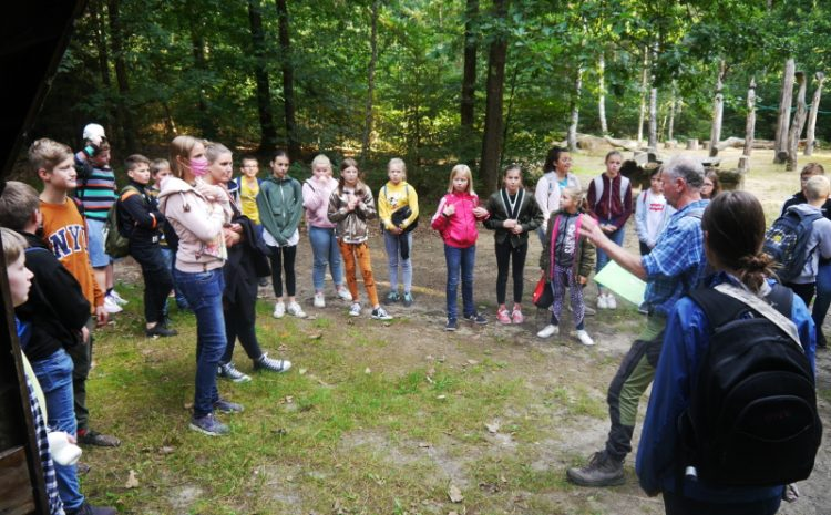 Waldspiele der 6. Klassen