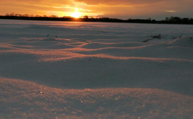 Schneebilder aus dem Flockdown